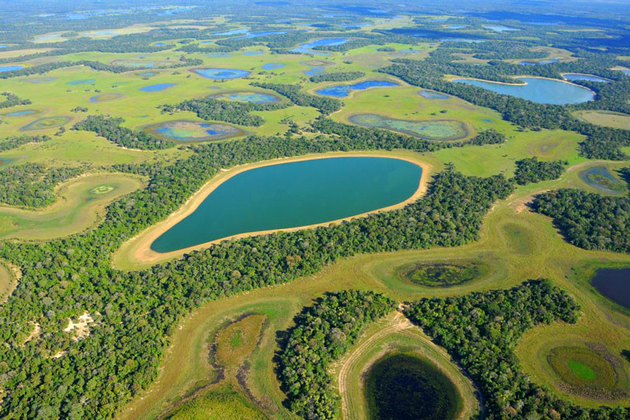 Wetlands as far as the eye can see (Image credit - Toda Materia)