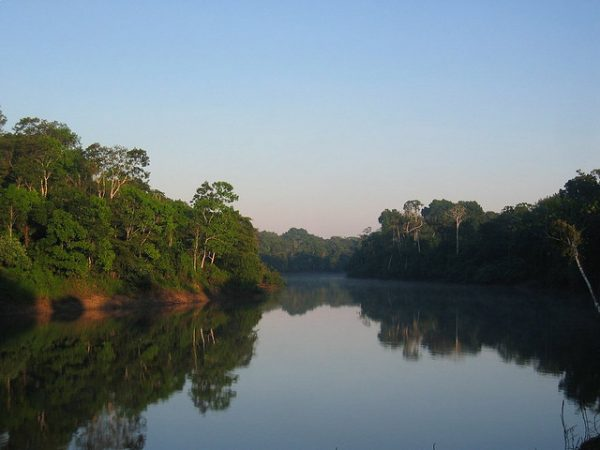 Amazon River - by Mark Goble
